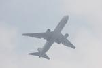タイ国際航空さんが、羽田空港で撮影した全日空 767-381の航空フォト(写真)