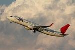 JA8964さんが、羽田空港で撮影したJALエクスプレス 737-846の航空フォト(写真)