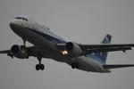 かみじょー。さんが、羽田空港で撮影した全日空 A320-211の航空フォト(写真)