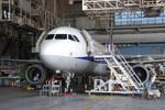 ワーゲンバスさんが、羽田空港で撮影した全日空 A320-214の航空フォト(写真)