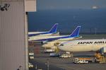 N787EXさんが、羽田空港で撮影した全日空 A320-214の航空フォト(写真)