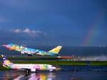TOY2011さんが、羽田空港で撮影したソラシド エア 737-4M0の航空フォト(写真)