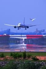 TOY2011さんが、富山空港で撮影した全日空 767-381の航空フォト(写真)