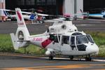 へりさんが、東京ヘリポートで撮影した東邦航空 AS365N2 Dauphin 2の航空フォト(写真)