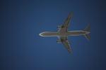 Nyaonさんが、伊丹空港で撮影した全日空 MD-11の航空フォト(写真)