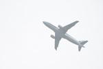 oneworld AA隊長さんが、成田国際空港で撮影した全日空 A320-214の航空フォト(写真)