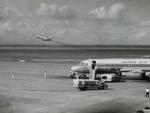 ぺペロンチさんが、羽田空港で撮影した日本航空 880M (22M-22)の航空フォト(写真)