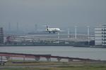 SKYLINEさんが、羽田空港で撮影した日本航空 MD-90-30の航空フォト(写真)