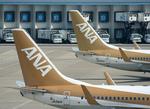 なごやんさんが、中部国際空港で撮影した全日空 737-781の航空フォト(写真)