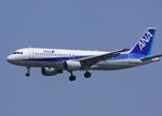 さわすけさんが、仙台空港で撮影した全日空 A320-211の航空フォト(写真)