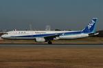 青路村さんが、伊丹空港で撮影した全日空 A321-131の航空フォト(写真)