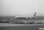 鼻たれ小僧さんが、羽田空港で撮影したフライング・タイガー・ラインの航空フォト(写真)