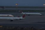 KAZKAZさんが、羽田空港で撮影した日本航空 MD-90-30の航空フォト(写真)