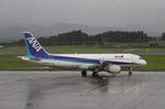 りんたろうさんが、鹿児島空港で撮影した全日空 A320-211の航空フォト(写真)
