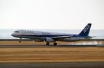 たぁさんが、山口宇部空港で撮影した全日空 A321-131の航空フォト(写真)