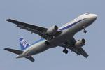 かずぽんさんが、羽田空港で撮影した全日空 A320-211の航空フォト(写真)
