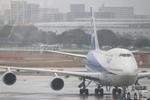 tobiumeさんが、福岡空港で撮影した全日空 747-481(D)の航空フォト(写真)