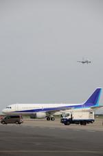 パンダさんが、羽田空港で撮影した全日空 A320-214の航空フォト(写真)