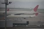 はみんぐばーどさんが、羽田空港で撮影した日本航空 MD-90-30の航空フォト(写真)