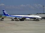フェルプスさんが、羽田空港で撮影した全日空 A321-131の航空フォト(写真)