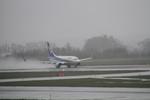 女満別空港 - Memambetsu Airport [MMB/RJCM]で撮影された全日空 - All Nippon Airways [NH/ANA]の航空機写真