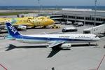 kinsanさんが、那覇空港で撮影した全日空 A321-131の航空フォト(写真)