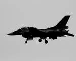 JA732Jさんが、岐阜基地で撮影した航空自衛隊 F-2Bの航空フォト(写真)