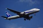 ロロちゃんさんが、羽田空港で撮影した全日空 A320-211の航空フォト(写真)