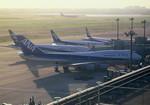 Espace77さんが、羽田空港で撮影した全日空 747-481(D)の航空フォト(写真)