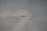 Koenig117さんが、成田国際空港で撮影したアエロフロート・ロシア航空 A330-343Xの航空フォト(写真)