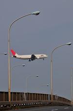 tohruさんが、羽田空港で撮影した日本航空 A300B4-622Rの航空フォト(写真)