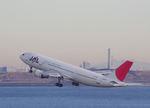 ヘムさんが、羽田空港で撮影した日本航空 A300B4-622Rの航空フォト(写真)