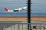 wing_oitさんが、大分空港で撮影した日本航空 A300B4-622Rの航空フォト(写真)