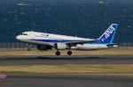 JESTARさんが、羽田空港で撮影した全日空 A320-211の航空フォト(写真)