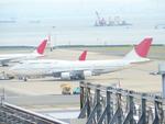 115系白狸さんが、羽田空港で撮影した日本航空 747-446Dの航空フォト(写真)