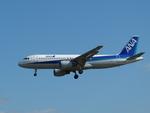 pepeA330さんが、福岡空港で撮影した全日空 A320-211の航空フォト(写真)