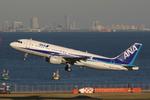 Kinyaさんが、羽田空港で撮影した全日空 A320-211の航空フォト(写真)