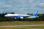 フリューゲルさんが、秋田空港で撮影した全日空 A321-131の航空フォト(写真)