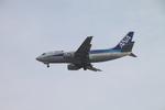 shimayanJPさんが、伊丹空港で撮影したANAウイングス 737-5L9の航空フォト(写真)