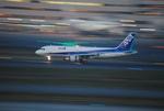 元住吉検車区さんが、羽田空港で撮影した全日空 A320-211の航空フォト(写真)
