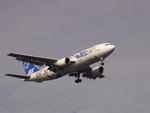 JA504Kさんが、羽田空港で撮影した日本エアシステム A300B2K-3Cの航空フォト(写真)