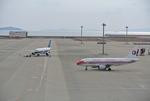 mickeyさんが、中部国際空港で撮影した中国東方航空 A319-112の航空フォト(写真)