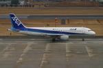 レン・巧猿さんが、名古屋飛行場で撮影した全日空 A320-211の航空フォト(写真)