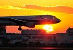 tohruさんが、羽田空港で撮影した全日空 A320-211の航空フォト(写真)