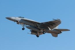 えくれあさんが、厚木飛行場で撮影したアメリカ海軍 F/A-18E Super Hornetの航空フォト(写真)