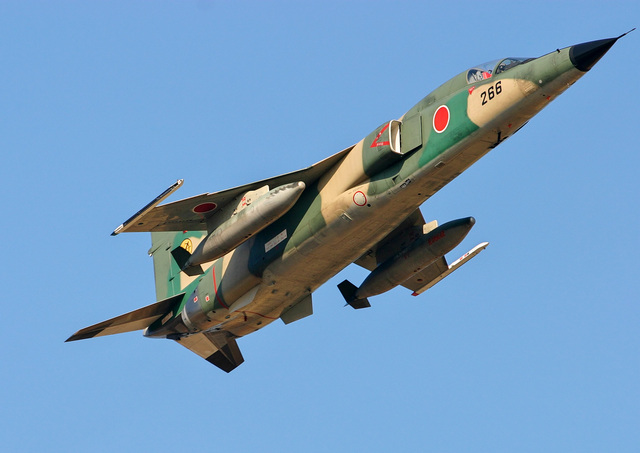 F 20 (戦闘機)の画像 p1_22