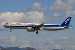 speedbirdさんが、名古屋飛行場で撮影した全日空 A321-131の航空フォト(写真)