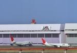 ギ―ピロさんが、羽田空港で撮影した日本航空 767-246の航空フォト(写真)