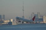 STAR☆ALLIANCEさんが、羽田空港で撮影した日本航空 MD-81 (DC-9-81)の航空フォト(写真)