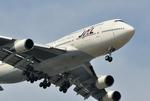 aMigOさんが、羽田空港で撮影した日本航空 747-446Dの航空フォト(写真)
